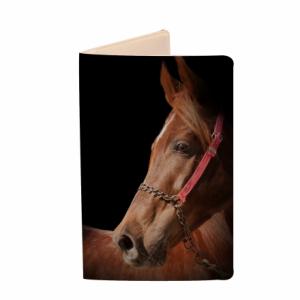 horse-dark_440_457